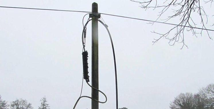 algerie telecom vol de cable téléphonique